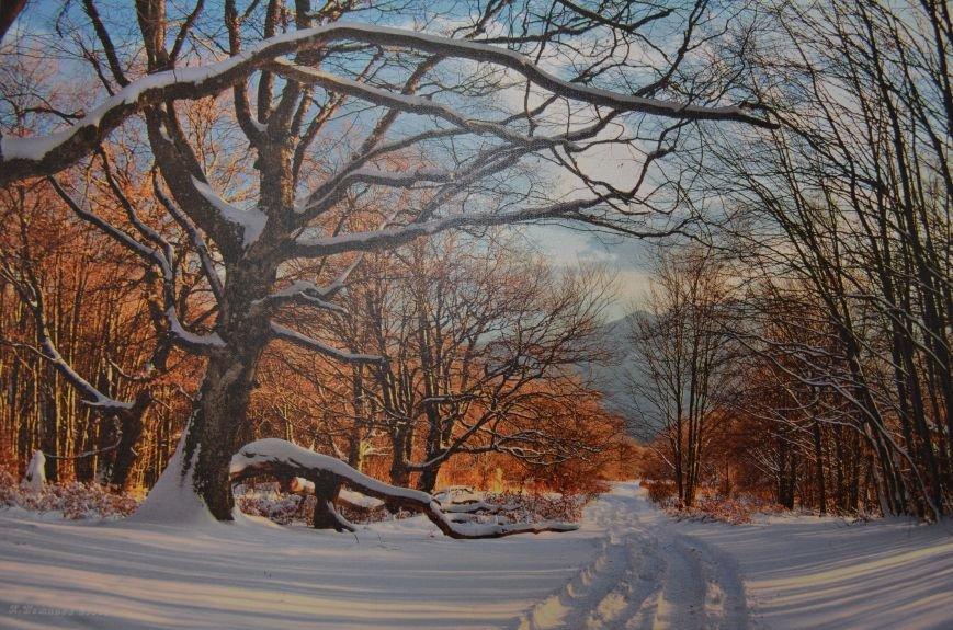 На открывшейся в Симферополе фотовыставке можно полюбоваться крымскими пейзажами (ФОТО), фото-12