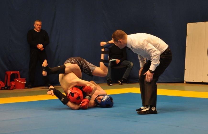 В Запорожской области создали спортивный клуб «Запорожская Сечь», фото-2