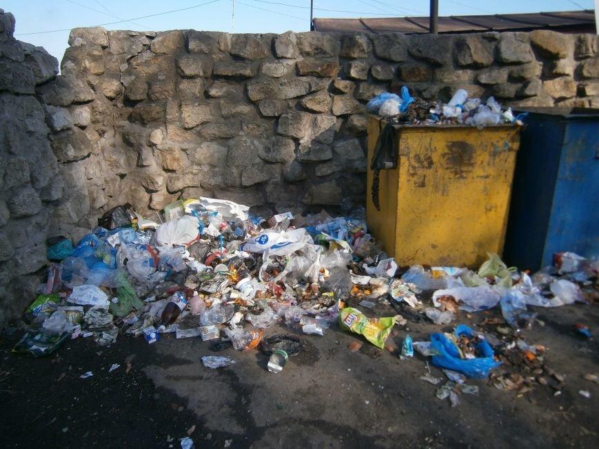 Причины возникновения стихийных свалок мусора в Димитрове (ФОТОРЕПОРТАЖ) (фото) - фото 2