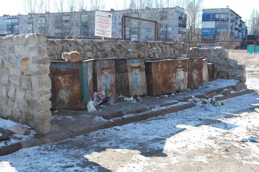 Причины возникновения стихийных свалок мусора в Димитрове (ФОТОРЕПОРТАЖ), фото-5