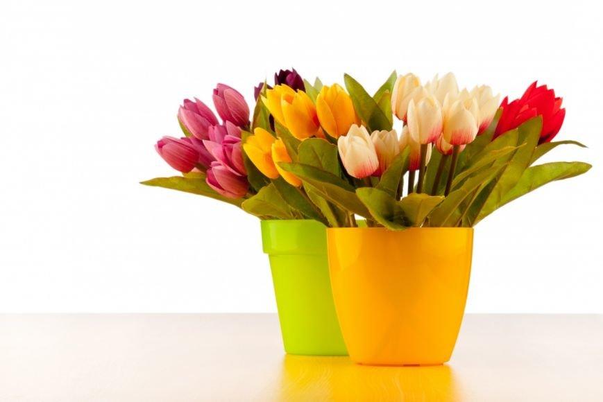 Идеи оригинальных подарков к 8 марта (фото) - фото 2
