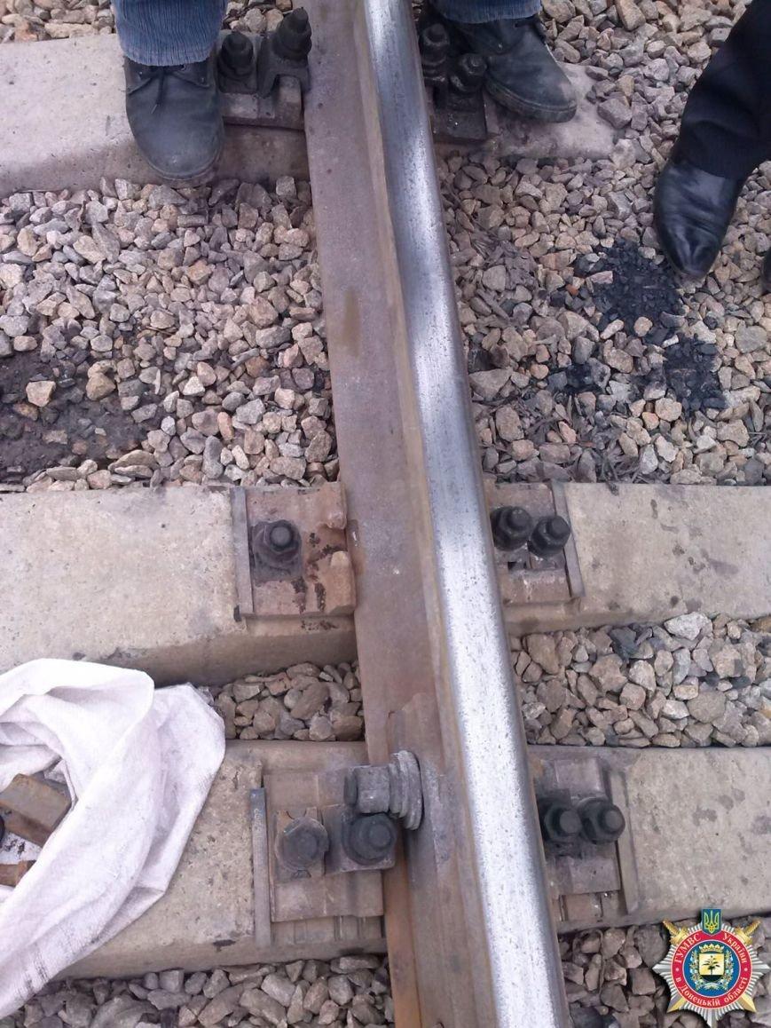 Димитровские милиционеры предотвратили аварию на железной дороге (ФОТО), фото-2
