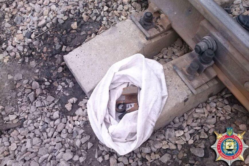 Димитровские милиционеры предотвратили аварию на железной дороге (ФОТО), фото-1