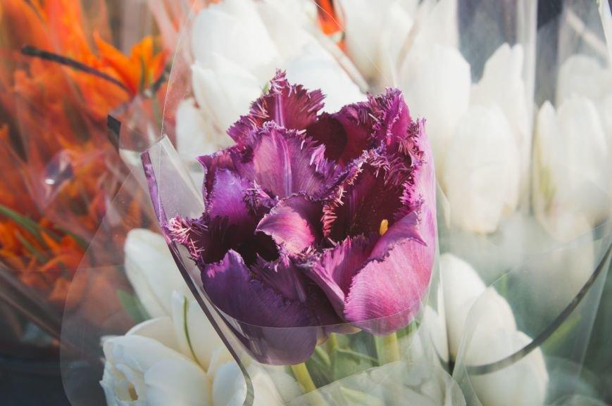 flowers-22