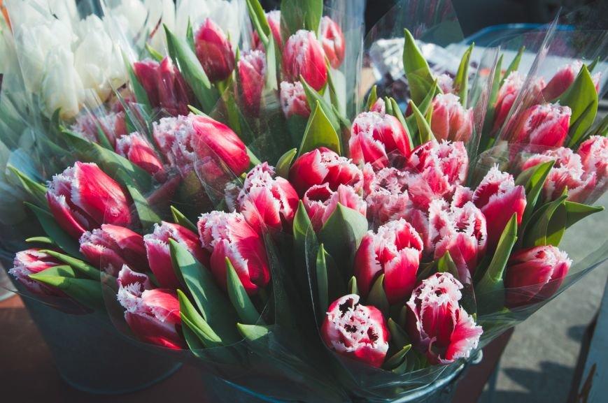 flowers-21