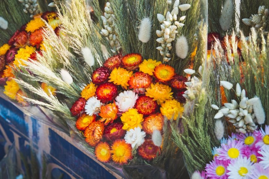 flowers-25