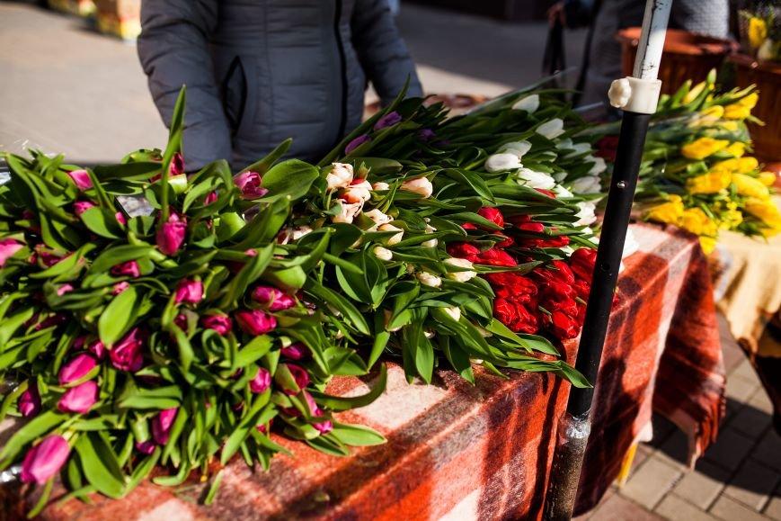 Белгород в цветах, фото-7
