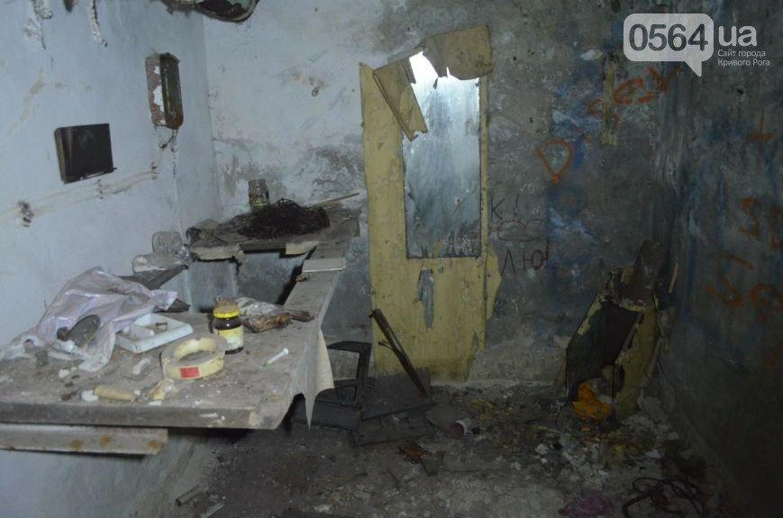 В Кривом Роге: обучали тактической медицине, проверили бомбоубежища, отметили 201-ую годовщину со Дня рождения Кобзаря (фото) - фото 2