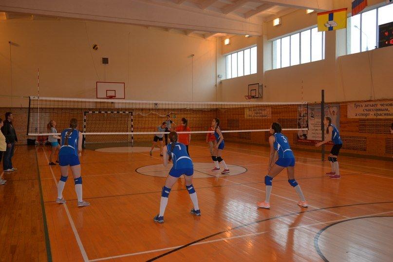 Женские волейбольные команды Домодедово отметили 8 марта участием в турнире (фото) - фото 1