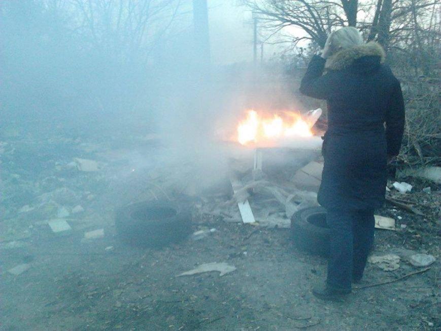 На Борщаговке массово истребили собак (ФОТО) (фото) - фото 1