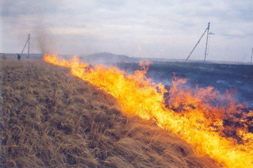 Пожары из-за сжиганий мусора и травы охватили Черниговщину (фото) - фото 1