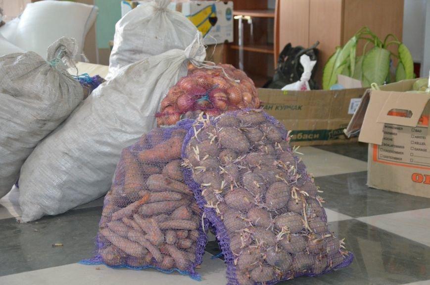 Жителям прифронтовых Чермалыка и Лебединское вблизи Мариуполя доставили гуманитарную помощь (ФОТО), фото-5