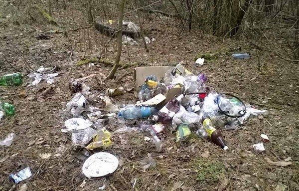 Гродненцы массово выбрасывают мусор в лесах, на дорогах и даже кладбищах (фото) - фото 1