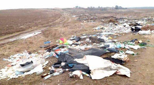 Гродненцы массово выбрасывают мусор в лесах, на дорогах и даже кладбищах (фото) - фото 4