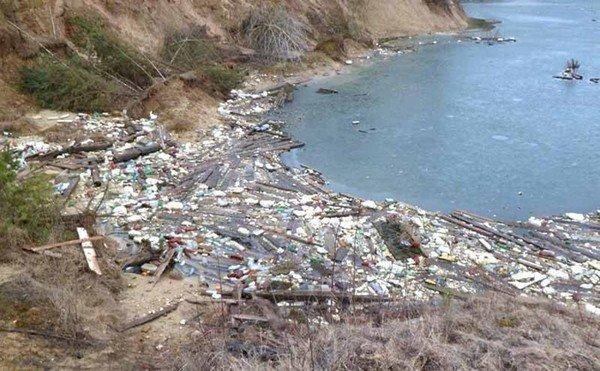 Гродненцы массово выбрасывают мусор в лесах, на дорогах и даже кладбищах (фото) - фото 3
