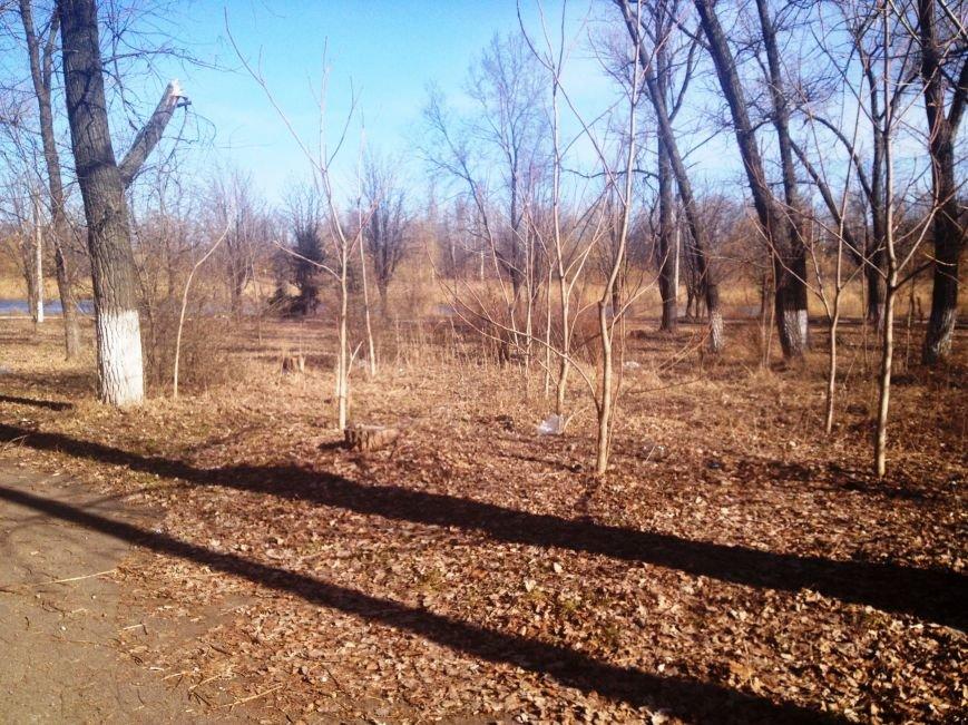 «Аттракцион ужасов» - новый образ красноармейского парка «Юбилейный», фото-18