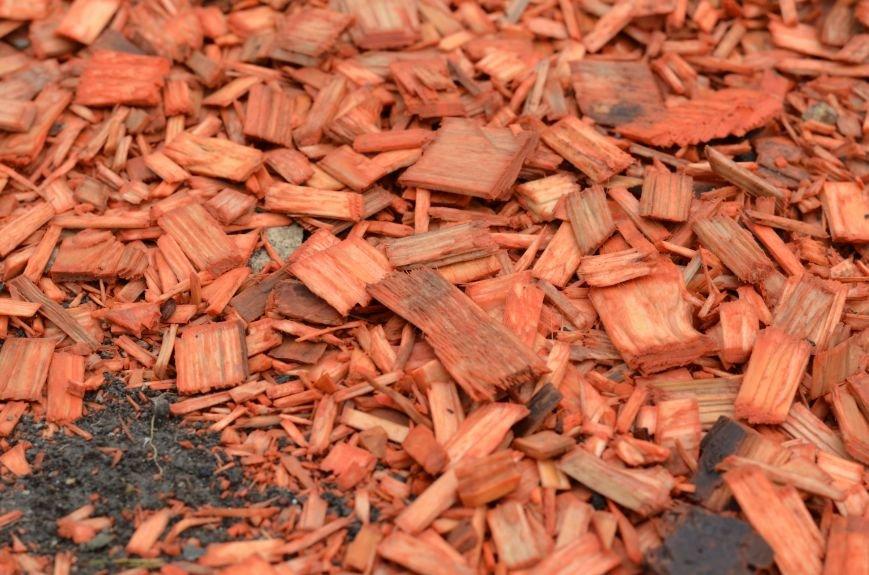 Центральную площадь Симферополя засыпали цветными опилками (ФОТО), фото-7