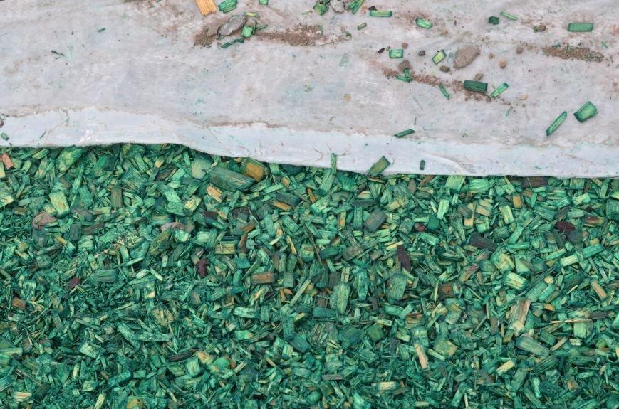 Центральную площадь Симферополя засыпали цветными опилками (ФОТО), фото-6