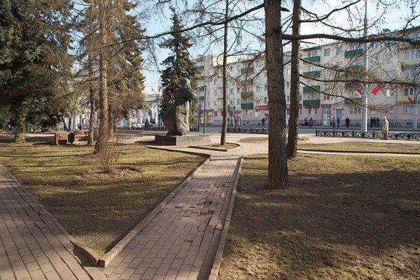 В Витебске обсудили благоустройство площадки у областной библиотеки в рамках проекта «Зеленый город», фото-4