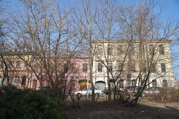 В Витебске обсудили благоустройство площадки у областной библиотеки в рамках проекта «Зеленый город», фото-2