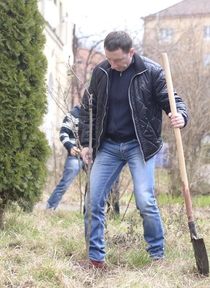 Ужгородські єдиноцентристи посадили 50 сакур – довкола УжНУ і на вулицях міста (ФОТО, ВІДЕО), фото-9