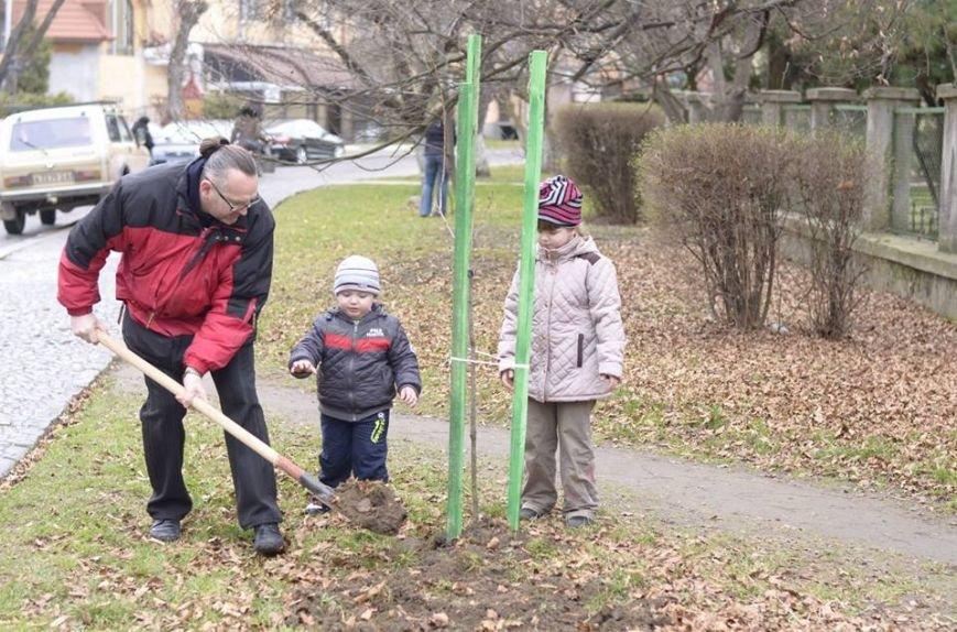 Ужгородські єдиноцентристи посадили 50 сакур – довкола УжНУ і на вулицях міста (ФОТО, ВІДЕО), фото-7