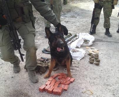 В Часов Яре сотрудники СБУ выявили тайник диверсантов с оружием и взрывчаткой, фото-4