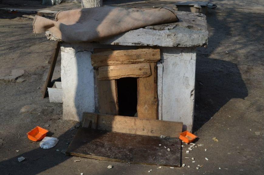 В «бомбоубежищах» Кривого Рога живут бомжи и бездомные животные (ФОТО) (фото) - фото 2