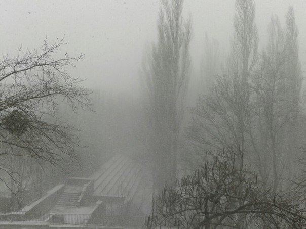 Весна в Крыму сменилась штормовой зимой (ФОТО, ВИДЕО) (фото) - фото 7