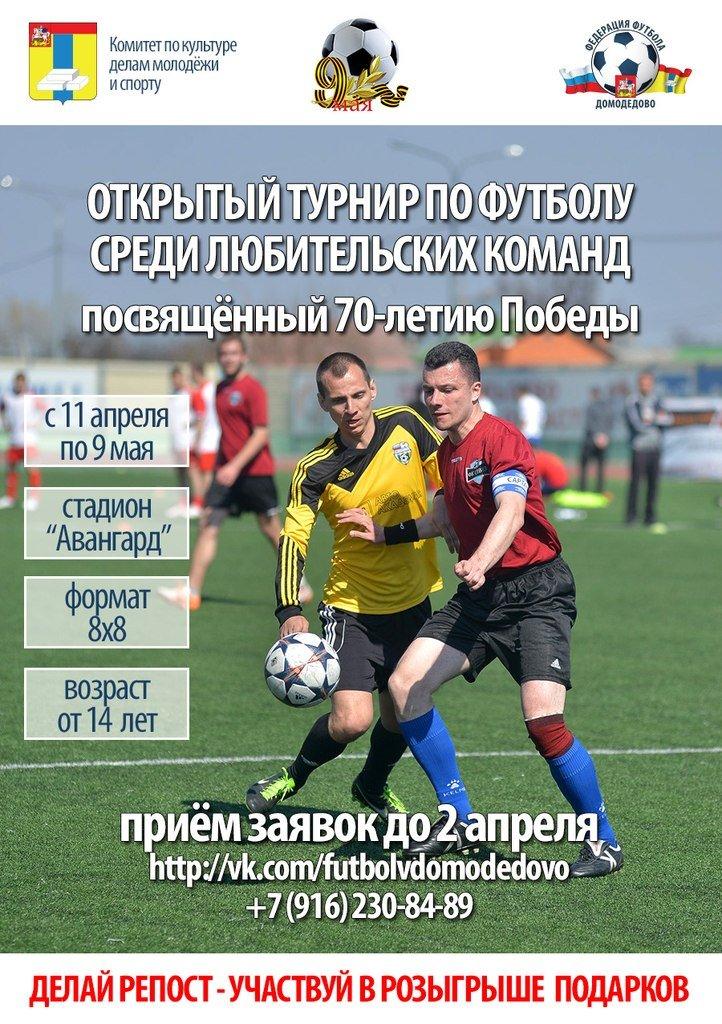 В Домодедово пройдёт открытый турнир по футболу среди любительских команд (фото) - фото 1
