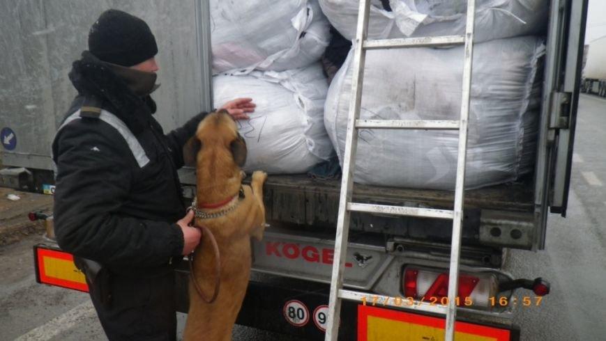 Служебные собаки помогли пограничникам Херсонщины обнаружить наркотики и оружие (фото) - фото 1