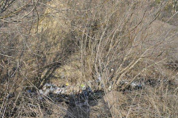 Головний редактор «Козацького краю»: « - це »мусорний«, »голий« і »вонючий« Яр...», фото-2