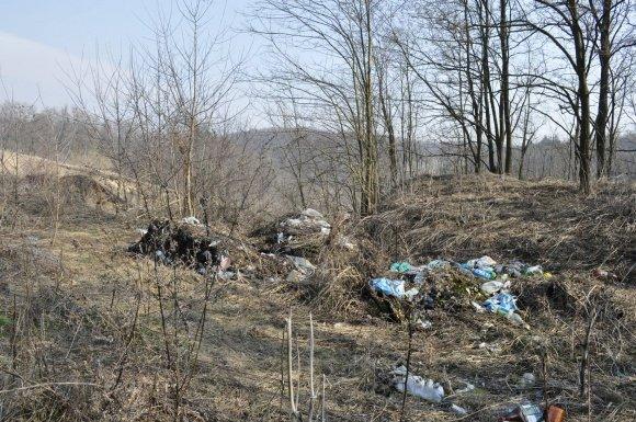 Головний редактор «Козацького краю»: « - це »мусорний«, »голий« і »вонючий« Яр...», фото-1
