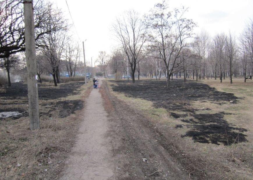 В Димитрове сегодня почернел главный парк города (ФОТОРЕПОРТАЖ), фото-3