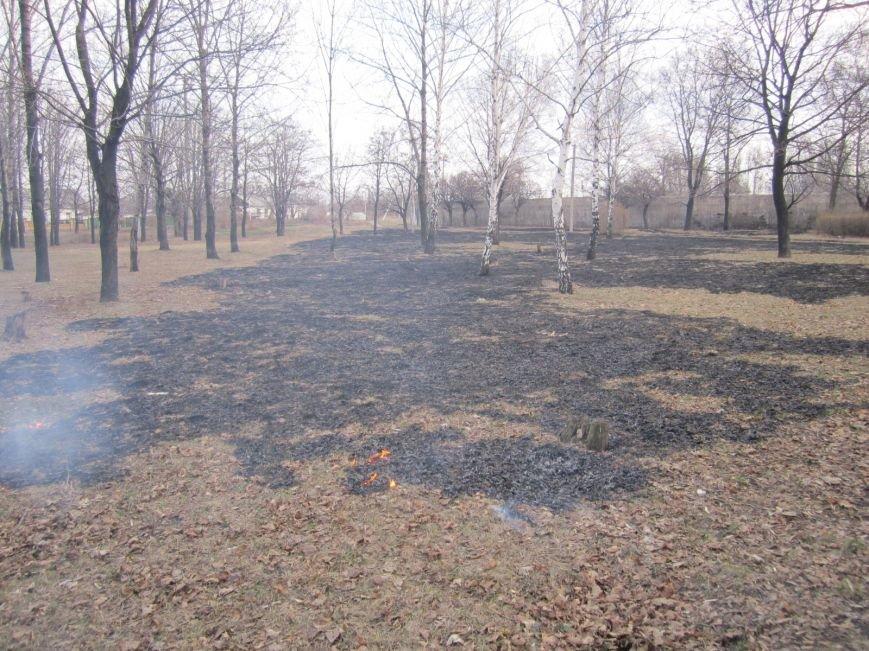 В Димитрове сегодня почернел главный парк города (ФОТОРЕПОРТАЖ), фото-5