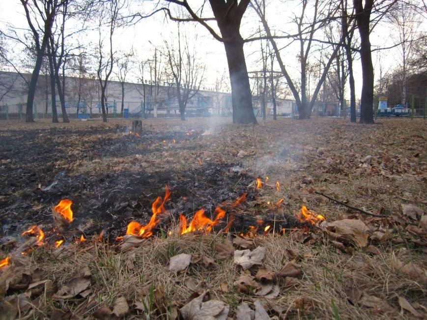 В Димитрове сегодня почернел главный парк города (ФОТОРЕПОРТАЖ), фото-8