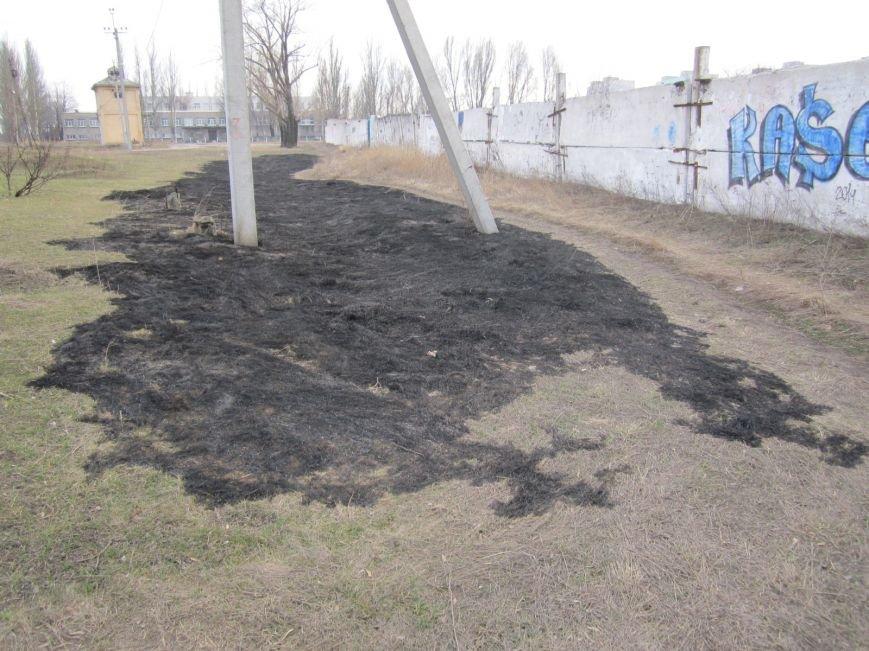 В Димитрове сегодня почернел главный парк города (ФОТОРЕПОРТАЖ), фото-2