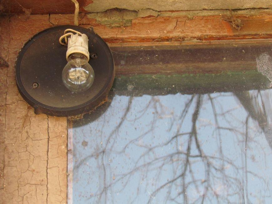 Фотопятница: «Свет над головой», фото-4