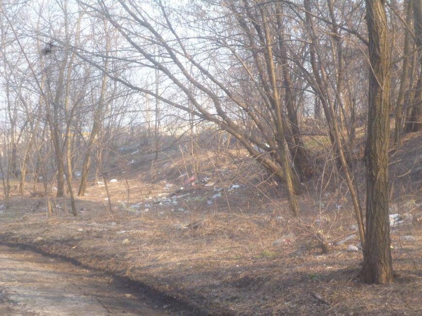 Криворожские активисты проведут первую в 2015 году уборку Соколовки. Что их ждет? (ФОТО) (фото) - фото 2