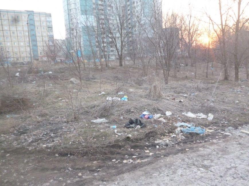 Криворожские активисты проведут первую в 2015 году уборку Соколовки. Что их ждет? (ФОТО) (фото) - фото 1