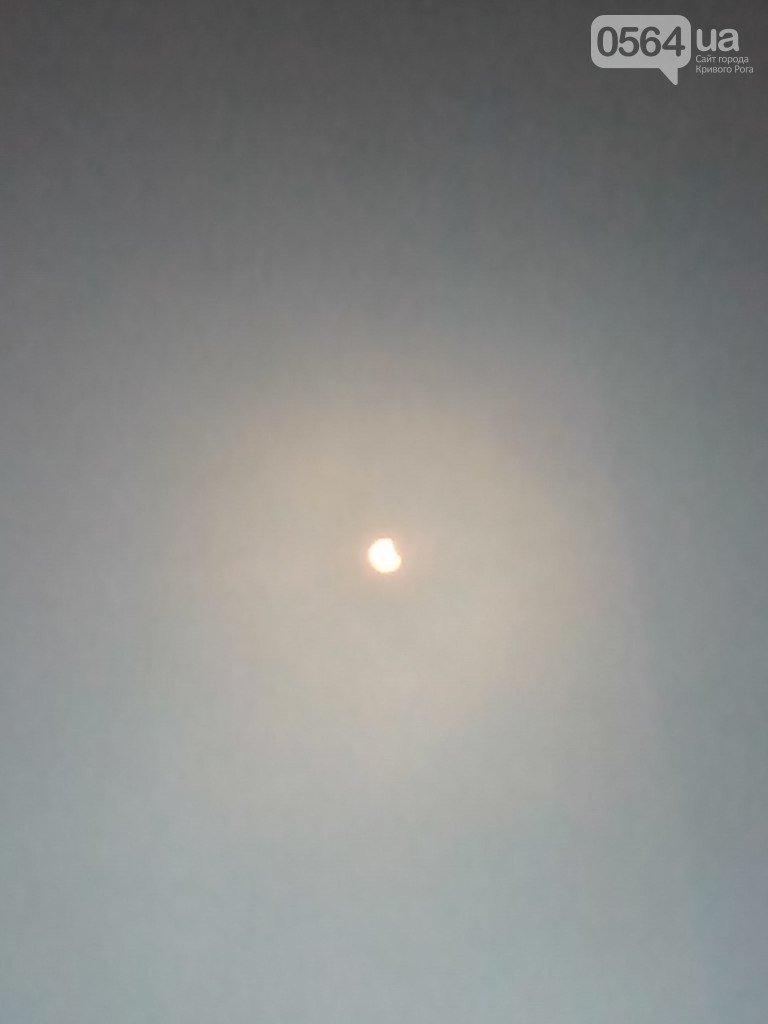 В Кривом Роге: наблюдали за солнечным затмением, экс-заммэра выпустили под залог, а общественного активиста судили (фото) - фото 1
