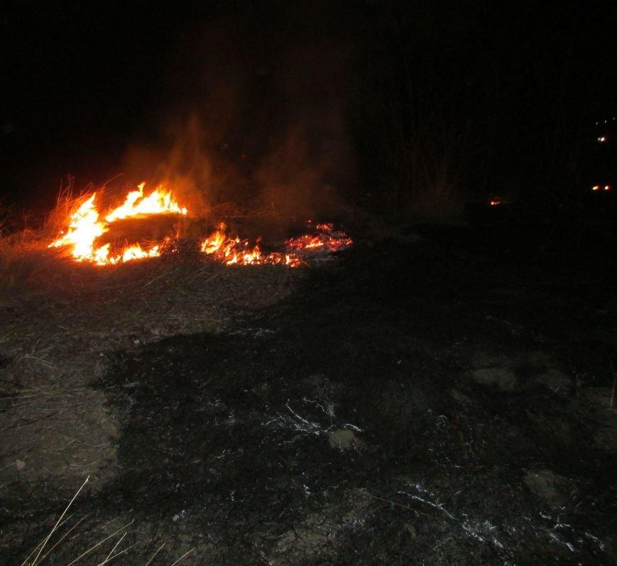Димитровские спасатели поймали поджигателя (ФОТО), фото-2
