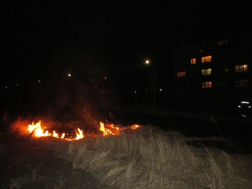 Димитровские спасатели поймали поджигателя (ФОТО), фото-1