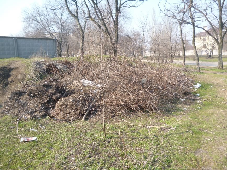 Жители Кривого Рога доказали, что могут собственными силами сделать город чище (ФОТО) (фото) - фото 1
