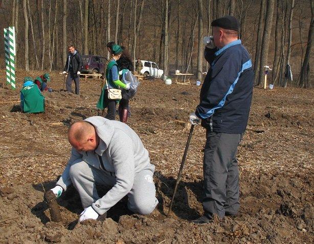 У суботу в області стартувала акція «Майбутнє лісу у твоїх руках», фото-4