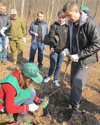 У суботу в області стартувала акція «Майбутнє лісу у твоїх руках», фото-3
