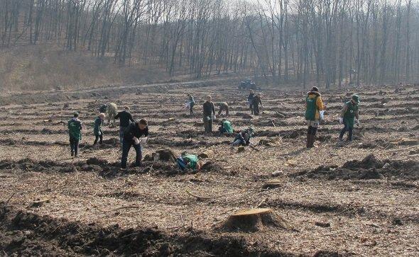 У суботу в області стартувала акція «Майбутнє лісу у твоїх руках», фото-5
