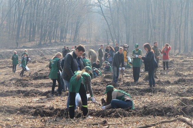 У суботу в області стартувала акція «Майбутнє лісу у твоїх руках», фото-2