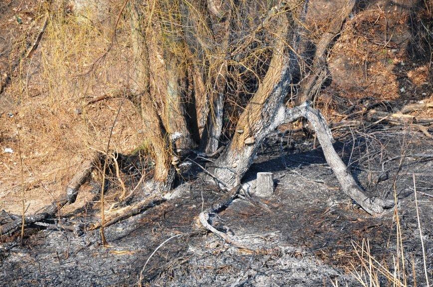 Пожарные в Юбилейном: обширное возгорание сухой травы и листьев (ФОТО и ВИДЕО), фото-12