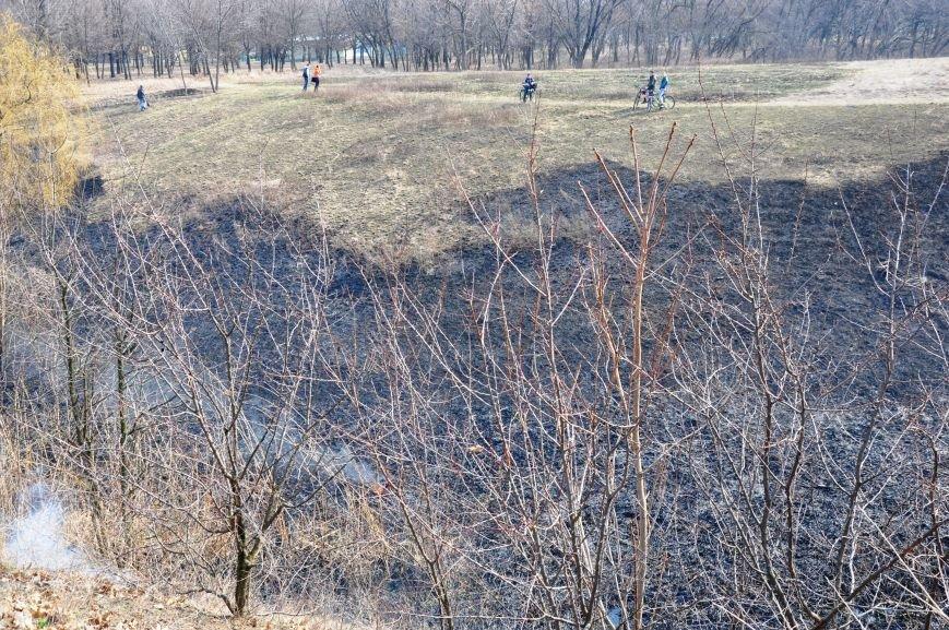 Пожарные в Юбилейном: обширное возгорание сухой травы и листьев (ФОТО и ВИДЕО), фото-4